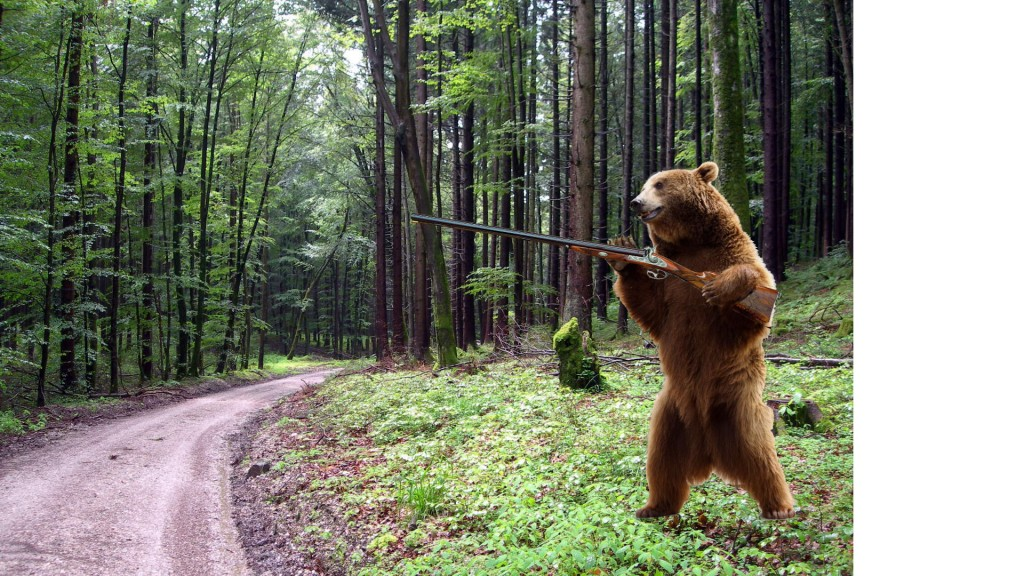 Watch out for the Killer Bear!
