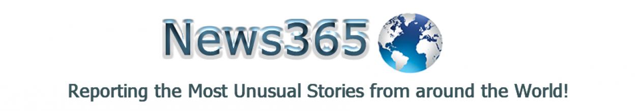News 365